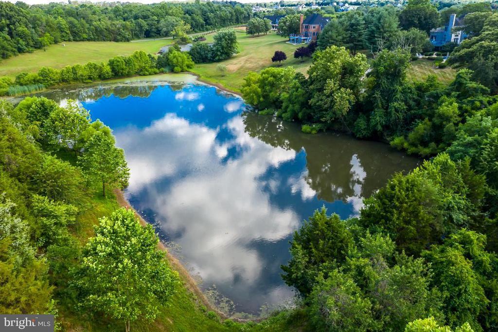 Pond - 22669 WATSON RD, LEESBURG
