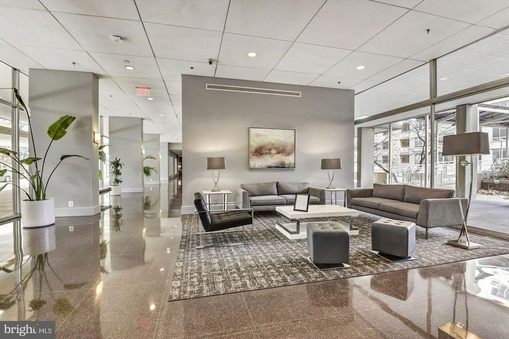 Gorgeous Renovated Lobby - 800 4TH ST SW #S210, WASHINGTON