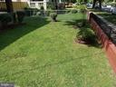 Exterior front yard - 4912 ARKANSAS AVE NW, WASHINGTON