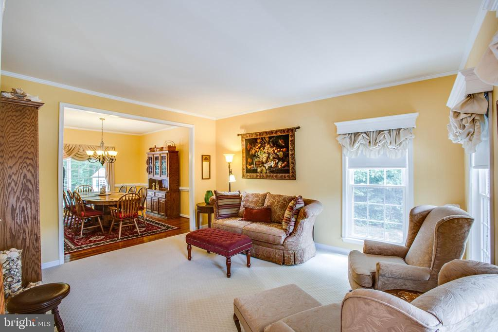 Formal living room with view of front lawn - 9101 SNOWY EGRET CT, SPOTSYLVANIA