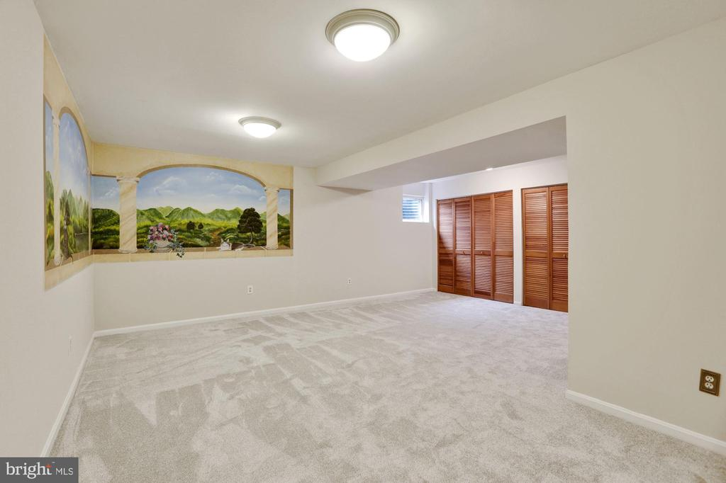 Lower level family room - 5038 DEQUINCEY DR, FAIRFAX