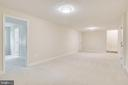 Recreation Room with 5th Bedroom - 4915 KING SOLOMON DR, ANNANDALE