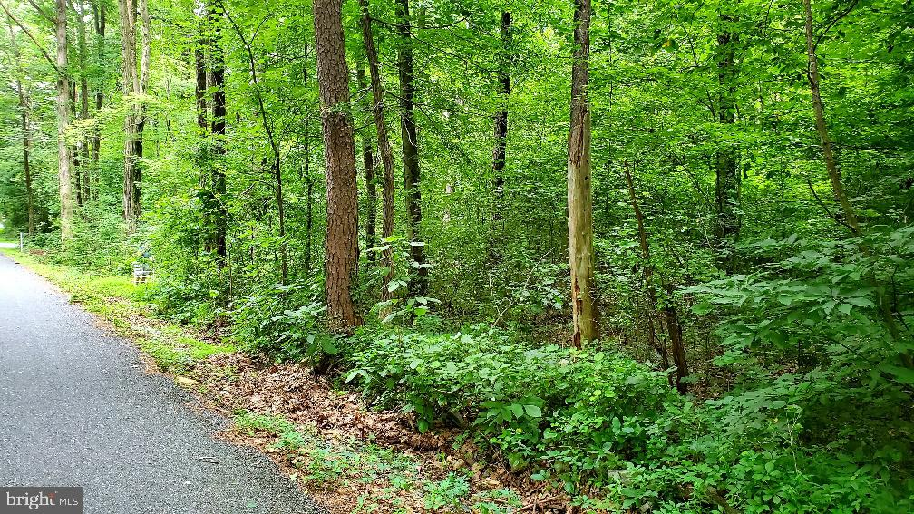Land for Sale at Bernville, Pennsylvania 19506 United States