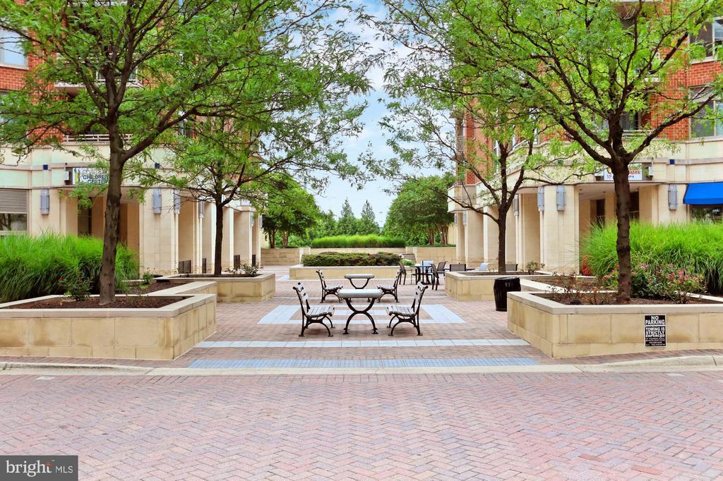 Park like outdoor space - 3650 S GLEBE RD #238, ARLINGTON