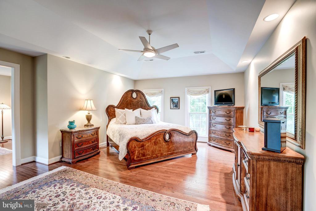 Inviting master bedroom - 9318 LUDGATE DR, ALEXANDRIA