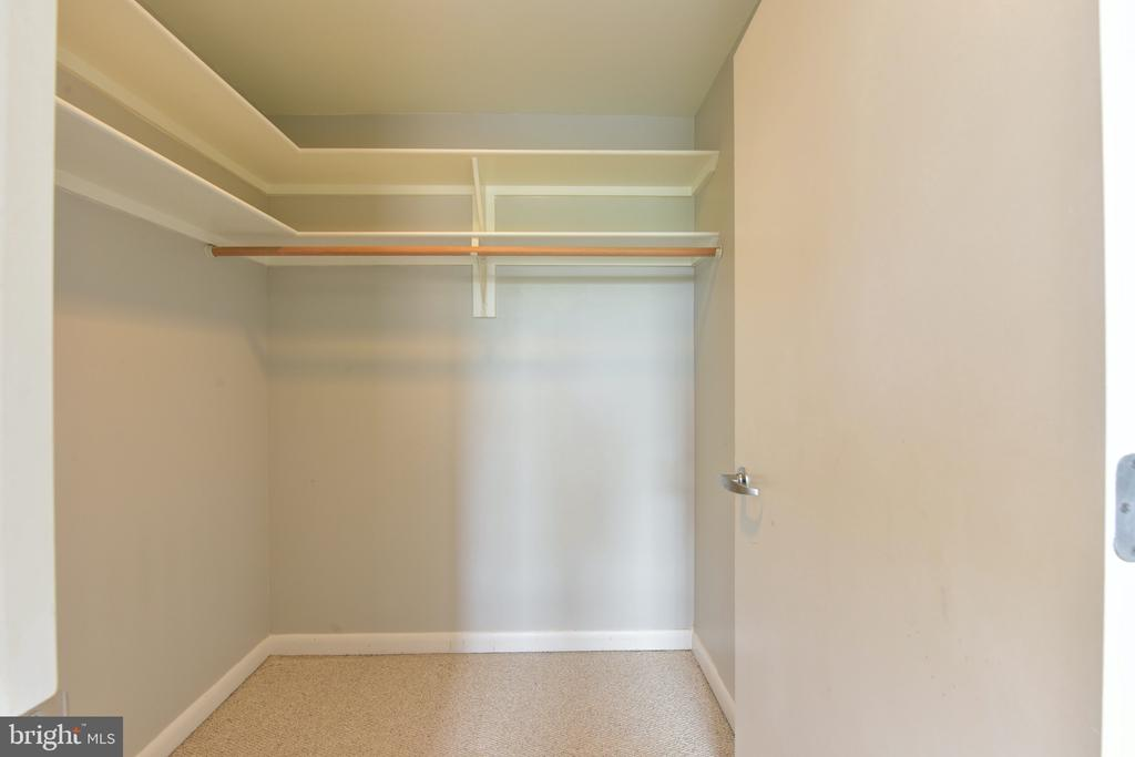 Master Bedroom Walk-in Closet - 350 G ST SW #N501, WASHINGTON