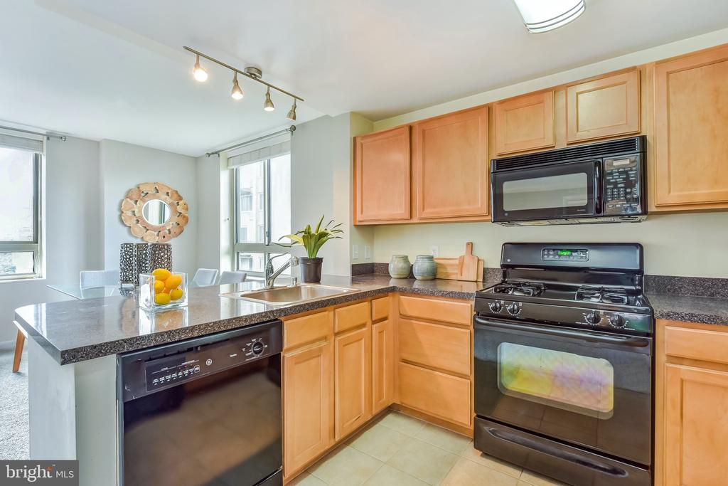 Kitchen - 350 G ST SW #N501, WASHINGTON