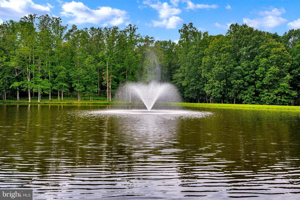 Pond at Main Gate of the Lake - 109 INDIAN HILLS RD, LOCUST GROVE