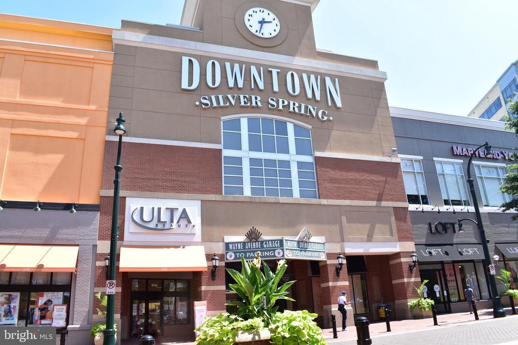 Downtown Silver Spring - 1320 FENWICK LN #401, SILVER SPRING