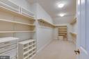 Owners  spacious closet - 9600 THISTLE RIDGE LN, VIENNA