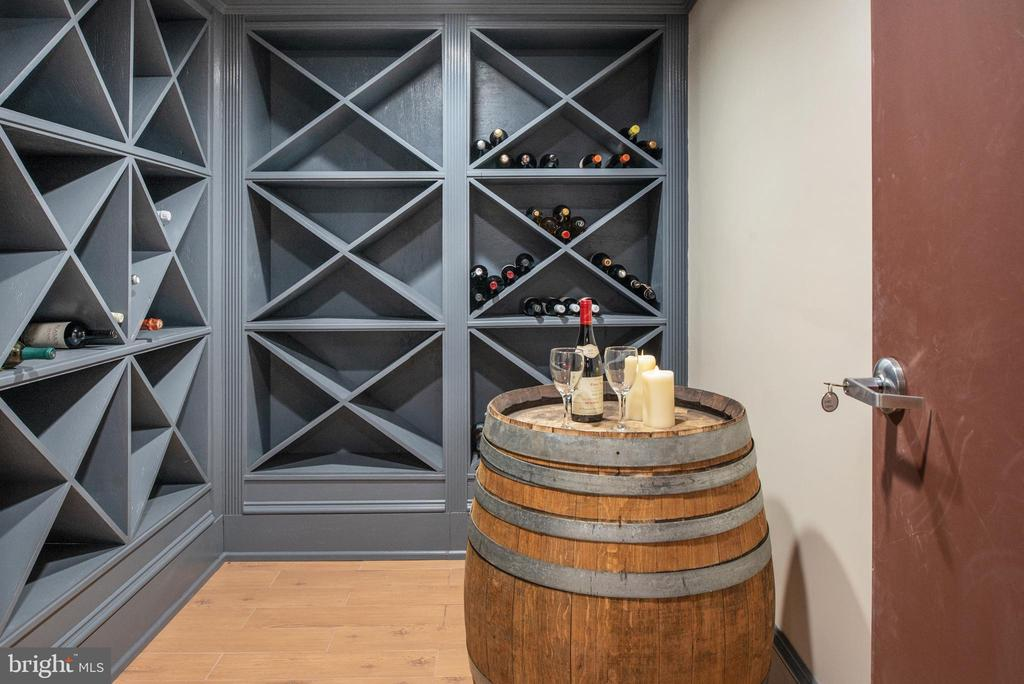 Wine cellar! - 8205 ASHY PETRAL CT, SPOTSYLVANIA