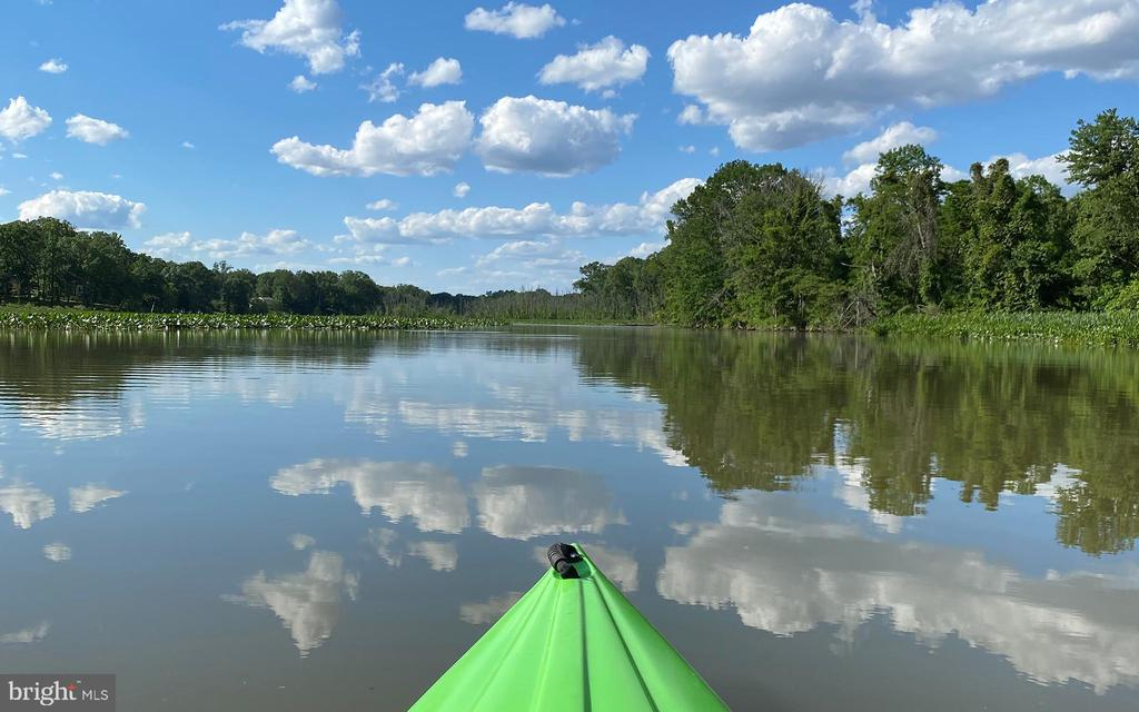 View of creek . - 3004 CUNNINGHAM DR, ALEXANDRIA
