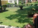 Front Yard - 4912 ARKANSAS AVE NW, WASHINGTON