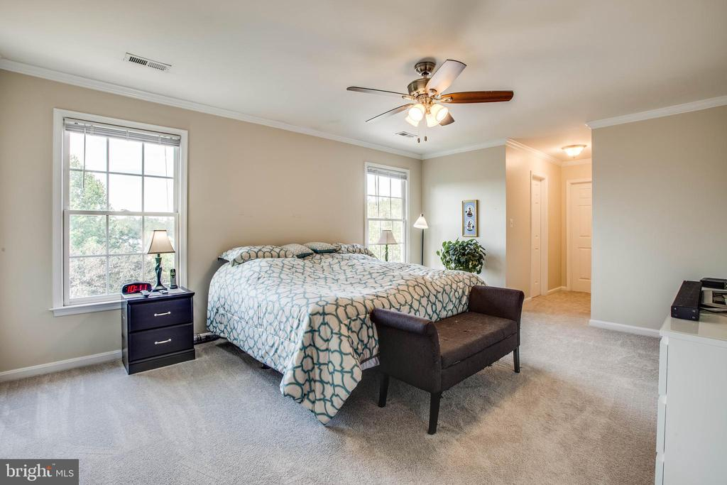 Master bedroom with two closets - 11 GOAL CT, STAFFORD