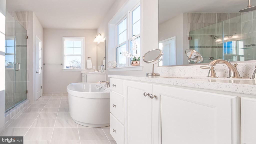 Owner's Bath - 10382 SPRINGSIDE TER, IJAMSVILLE