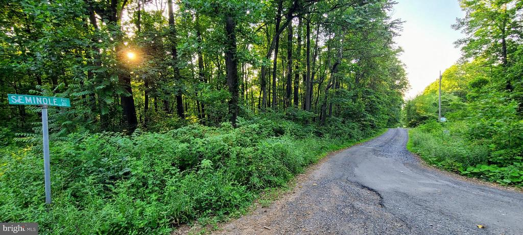 Level corner lot off of paved road. - 0 SEMINOLE RD, CHESTER GAP