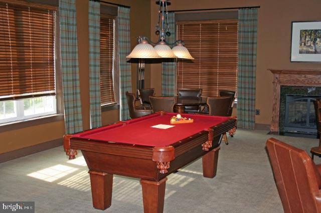 Club House Pool Table - 44557 GRANITE RUN TER, ASHBURN