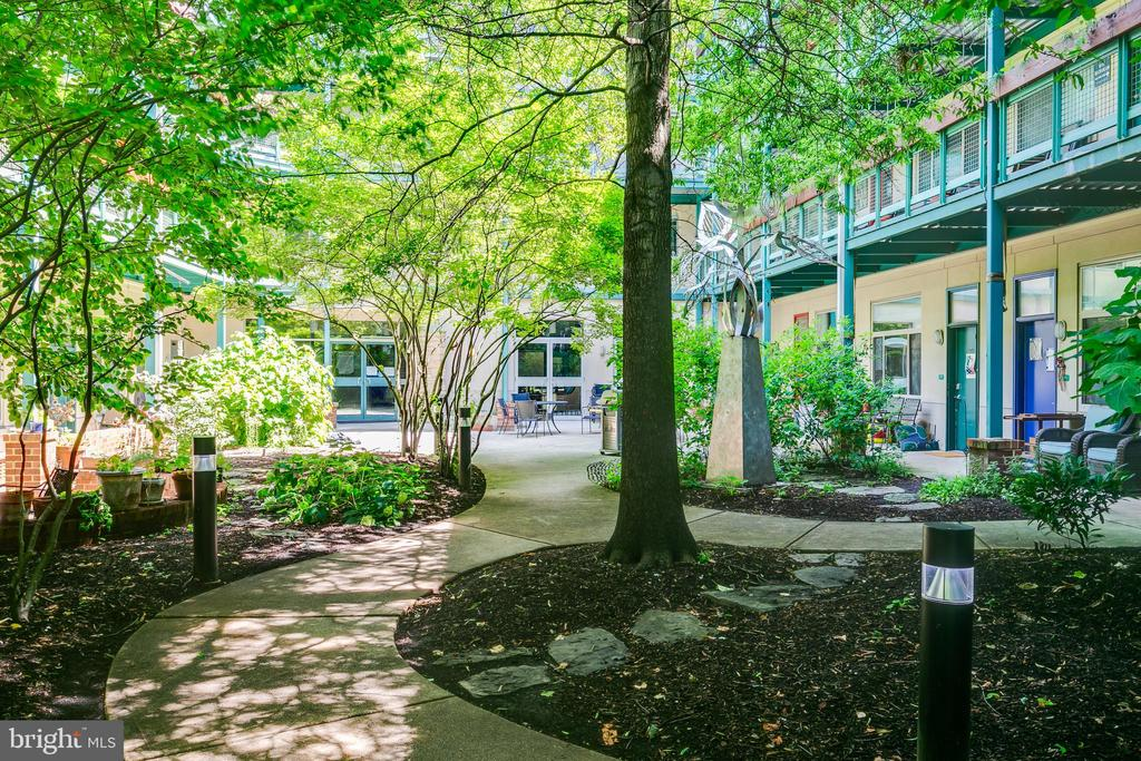 Courtyard leading to the main entrance. - 7981 EASTERN AVE #202, SILVER SPRING