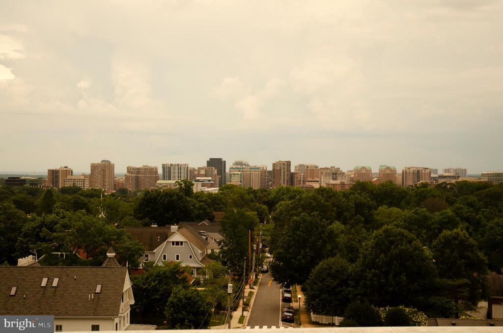 View of Arlington / Roof of Stoneridge Knoll - 4201 LEE HIGHWAY #404, ARLINGTON