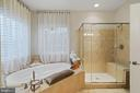 Duo Combination - Bath Tub & Shower Head - 42050 MIDDLEHAM CT, ASHBURN