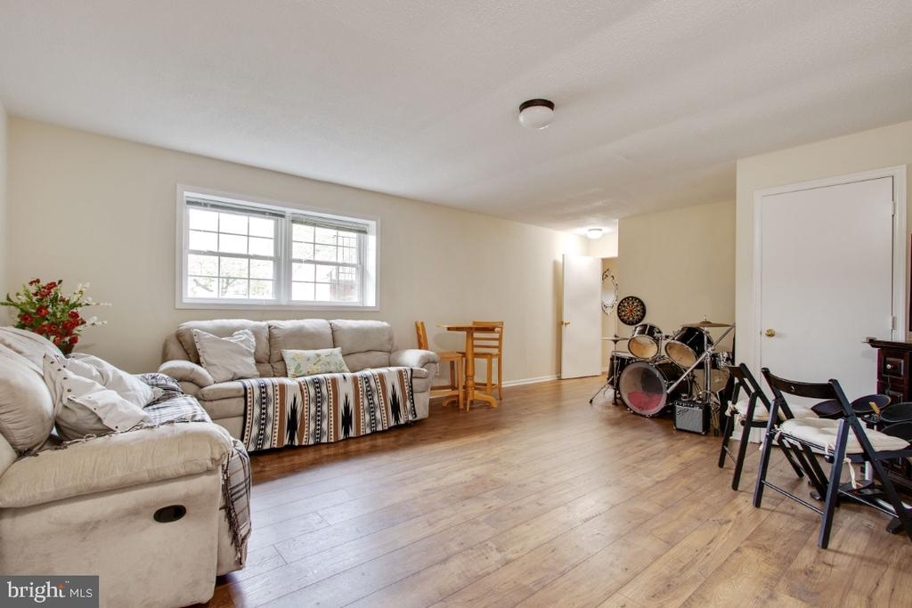 Rec Room in the Finished Basement - 20400 ALTAVISTA WAY, ASHBURN
