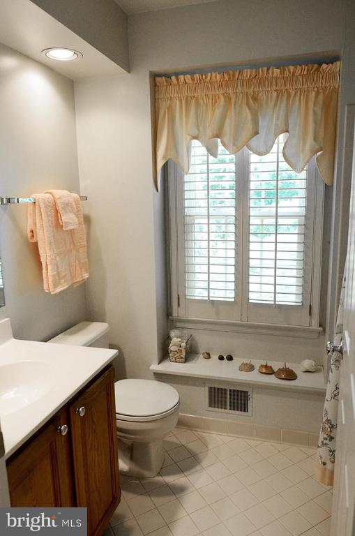 Full Upper Hall Bathroom - 14504 S HILLS CT, CENTREVILLE
