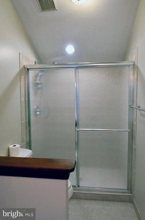 2nd En Suite Owner's BA w/shower & 2nd W.I. Closet - 14504 S HILLS CT, CENTREVILLE