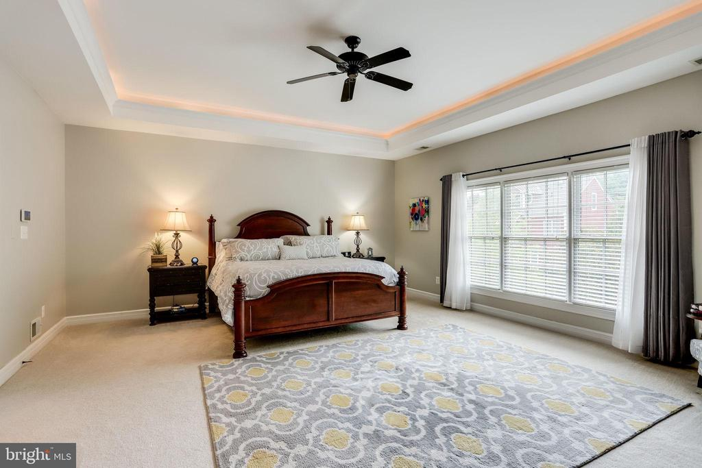 Owners suite with tray ceiling and soft lighting - 904 LOCUST ST, HERNDON