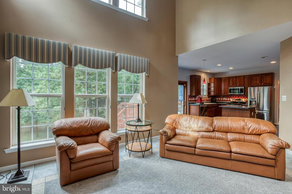 Family room - 43435 MINK MEADOWS ST, CHANTILLY