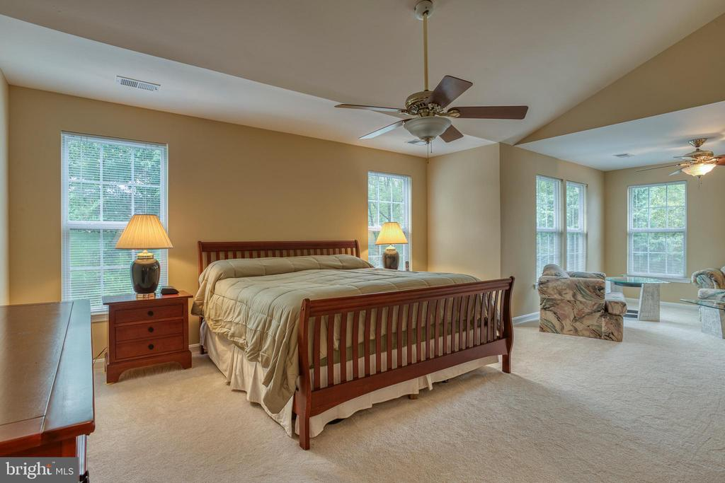 Owner's suite - 43435 MINK MEADOWS ST, CHANTILLY