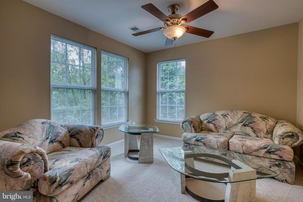 comfortable sitting area in Owner's Suite - 43435 MINK MEADOWS ST, CHANTILLY