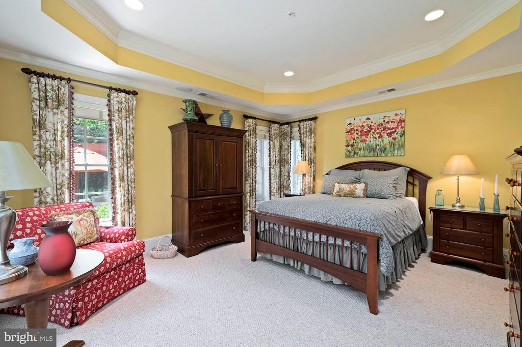 lower level guest bedroom - 11215 KINSALE CT, ELLICOTT CITY