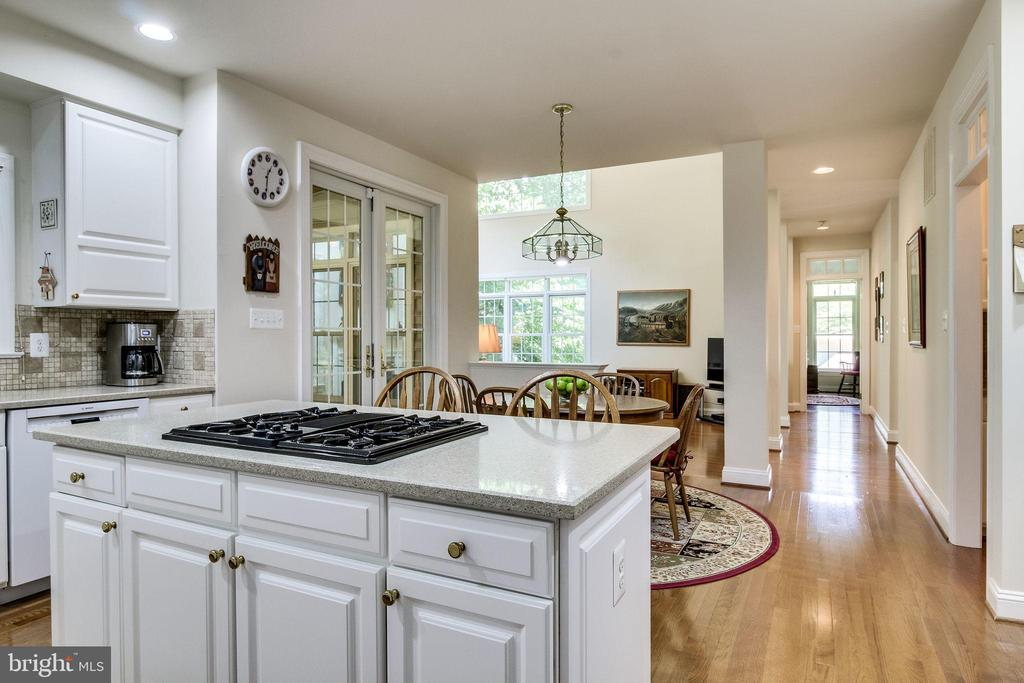 Granite counters & gas cooking - 3720 SPICEWOOD DR, ANNANDALE