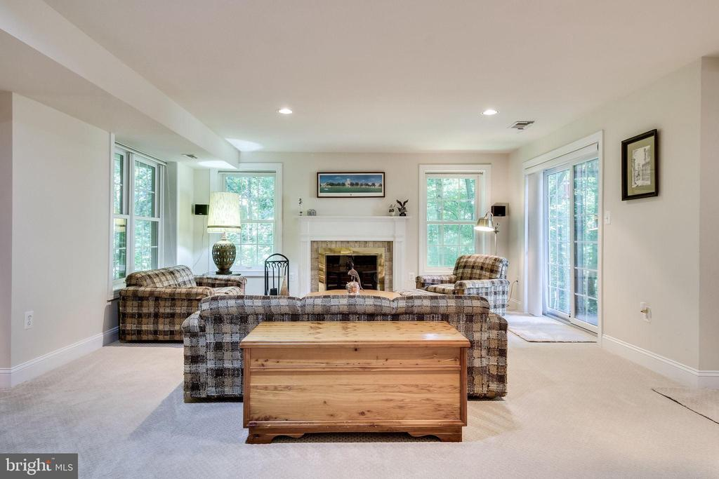 Recreation Room - 3720 SPICEWOOD DR, ANNANDALE