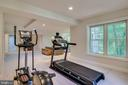 Exercise Area off Recreation Room - 3720 SPICEWOOD DR, ANNANDALE
