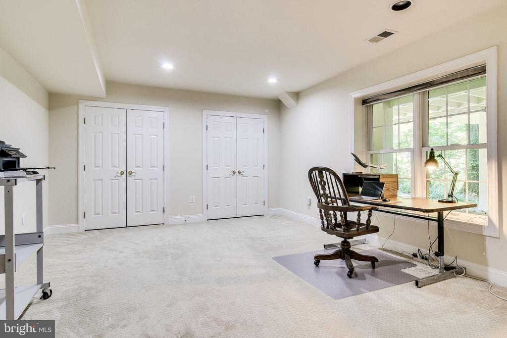 5th Bedroom on Lower Level - 3720 SPICEWOOD DR, ANNANDALE