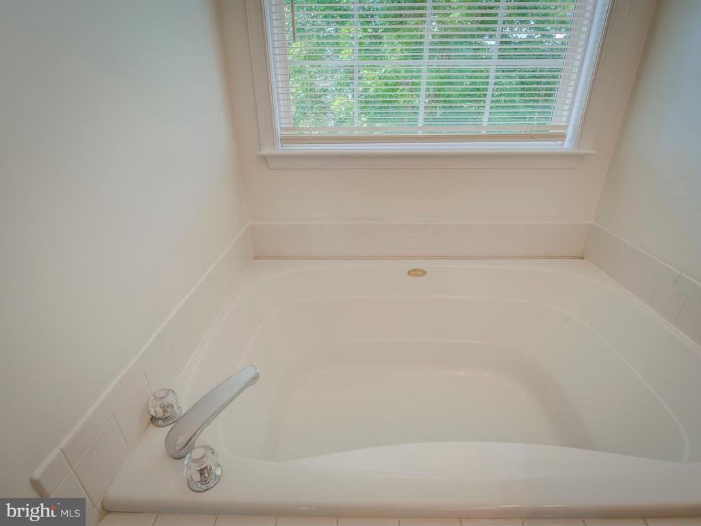 Master Bedroom-Soaking Tub - 103 ENGLISH CT SW, LEESBURG