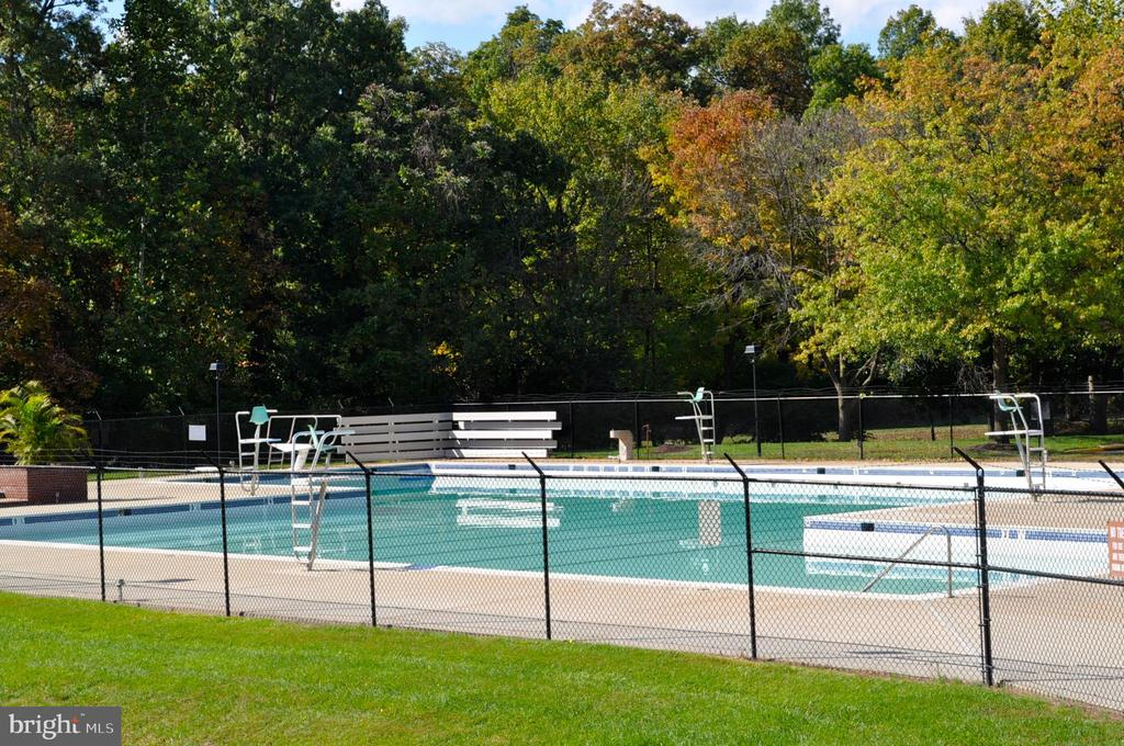 Community pool - 14826 HUNTING PATH PL, CENTREVILLE