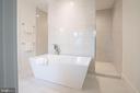 Shower behind tub - 110 TAPAWINGO RD SW, VIENNA