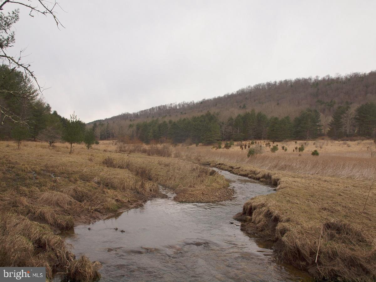Land for Sale at Sugar Grove, West Virginia 26815 United States