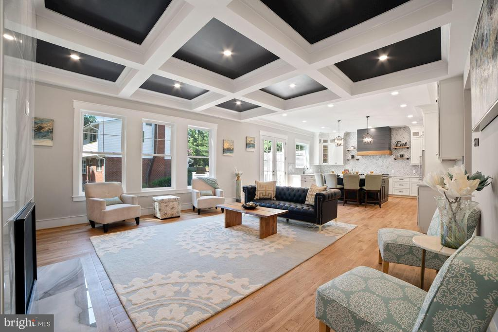 Cozy Family Room with custom ceiling - 5631 SOUTHAMPTON DR, SPRINGFIELD