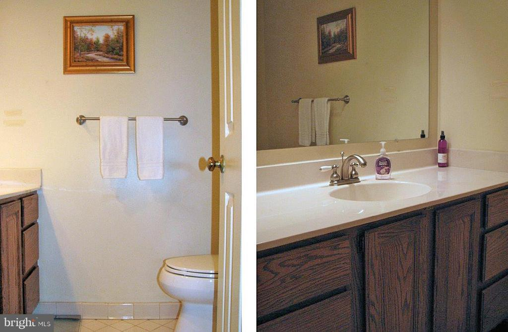 Main Level Powder Room - 14504 S HILLS CT, CENTREVILLE