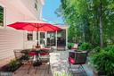 Mature trees - 6411 SPRINGHOUSE CIR, CLIFTON