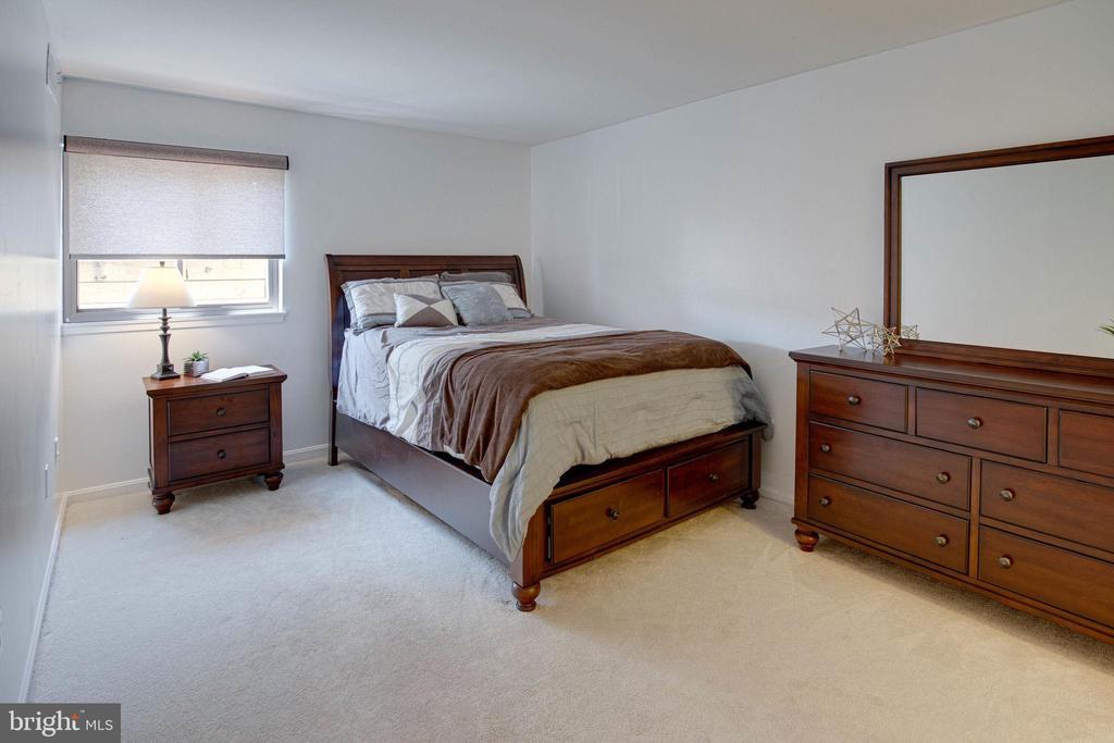 Spacious Owner's suite - 9802 KINGSBRIDGE DR #001, FAIRFAX