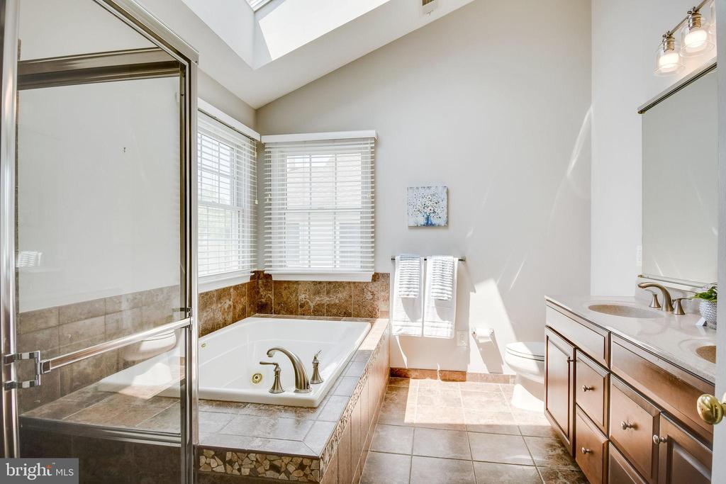 Spa-Like Bath with Skylight - 25973 STINGER DR, CHANTILLY