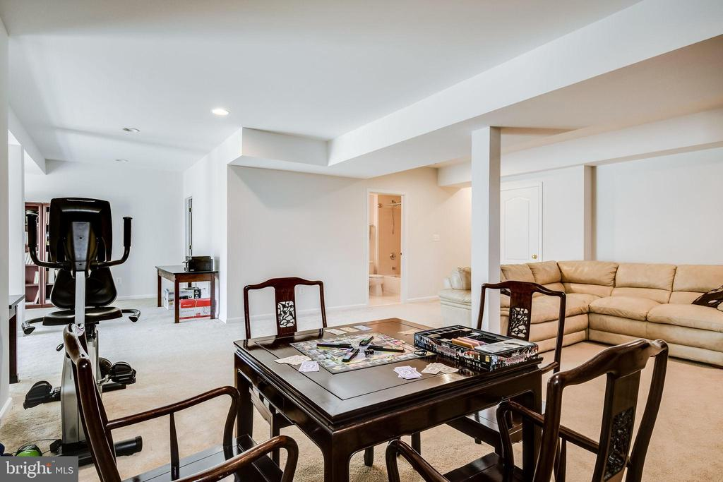 Space for Games & Exercise - 25973 STINGER DR, CHANTILLY