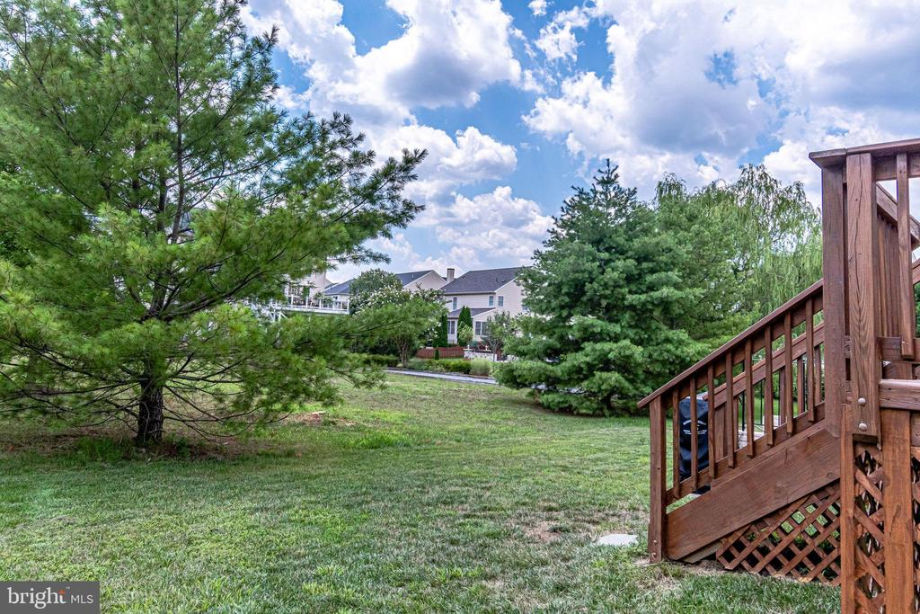 Trees Add Privacy - 25973 STINGER DR, CHANTILLY