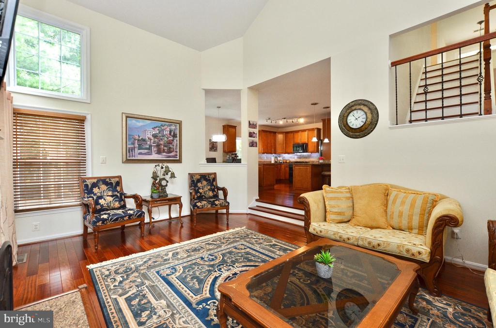 Family room - 46521 HOLLYMEAD PL, STERLING