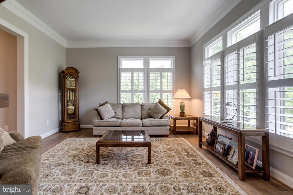 Formal Living Room - 41820 RESERVOIR RD, LEESBURG
