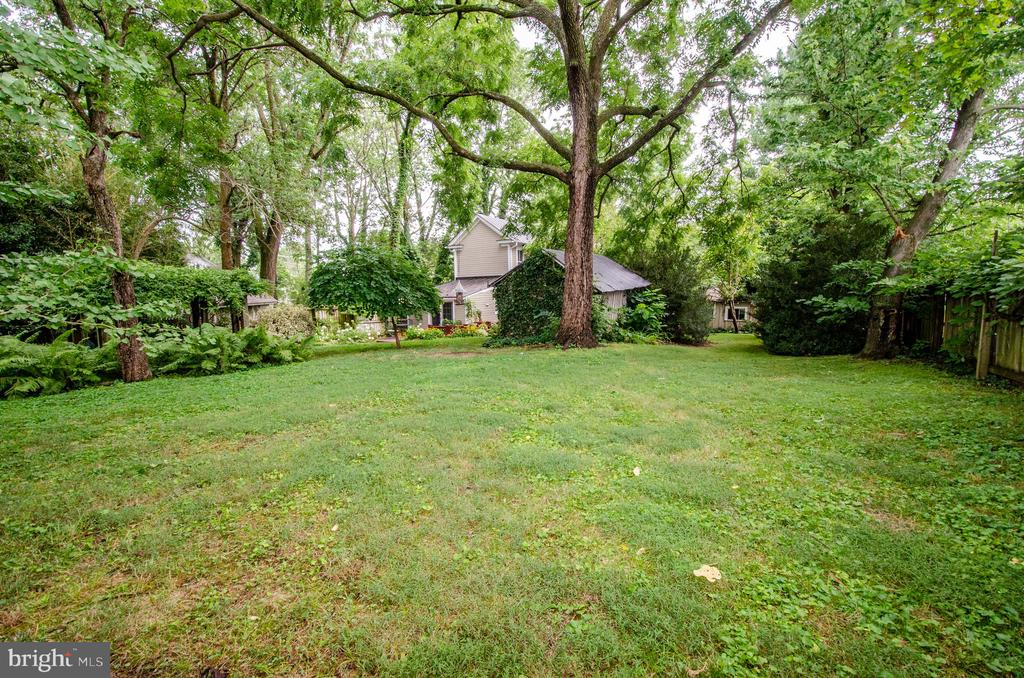 Open Space for pets or vegetable garden - 16 UNION ST NW, LEESBURG